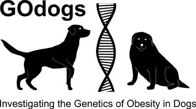 GOdogs logo - silhouettes of two labs - one sitting one standing either side of a DNA helix